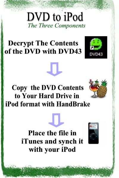 dvd to ipod process