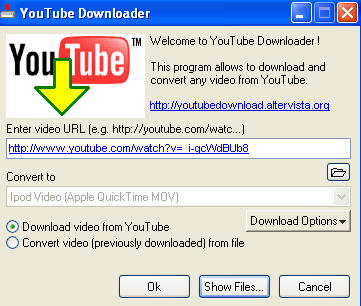 how to save YouTube video using YouTube Downloader